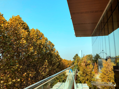 View of the city from the modern shopping mall in Tbilisi, Georgia. Deciduous trees on the background of blue sky. Autumn in the city