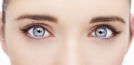 Un bel œil de femme au regard perspicace. Photo en gros plan