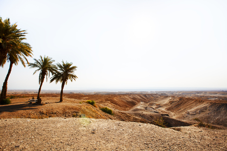 View from the Masada on the desert on a sunny day. Imagens