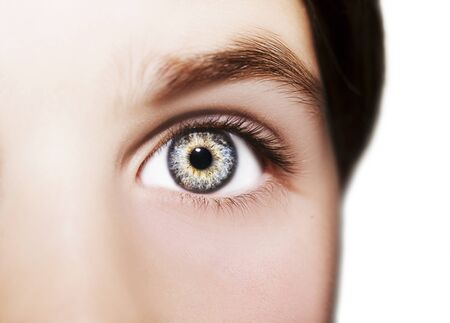 Un bel œil perspicace. Photo en gros plan.