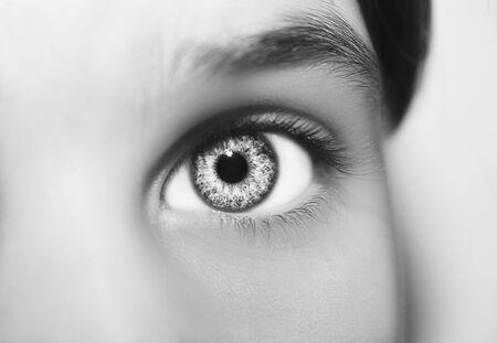 Een mooie inzichtelijke blik. Close-up shot.