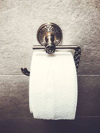 Roll of white toilet paper is hanging in the restroom on the wall. Close-up Stockfoto
