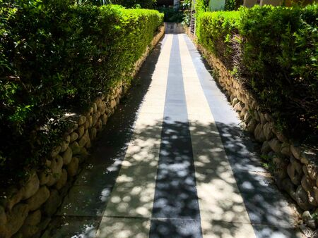 Beautiful flat path. Near green bushes with a fence. 写真素材 - 134398055