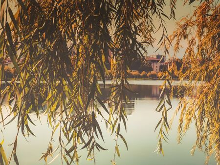 Beautiful landscape with a lake in a city park. Autumn day in the city.