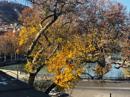 Beautiful landscape of the old district, view of the river and tree agains the sky. Old Tbilisi, winter in the city. 写真素材