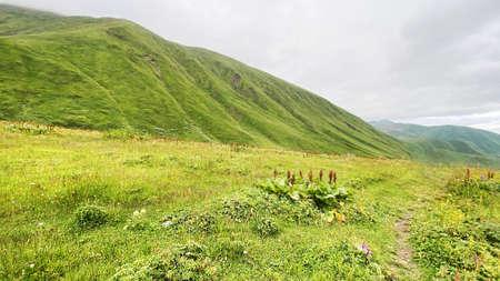Travel to the mountainous region of Georgia. Standard-Bild