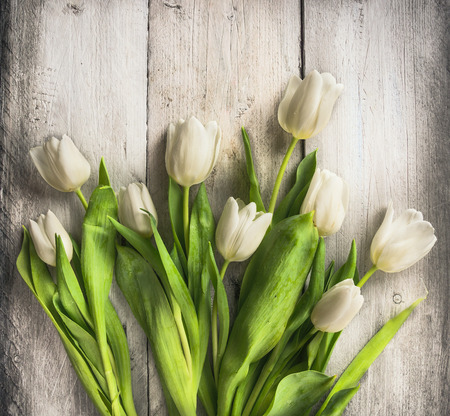pot light: White tulips bunch on old light wooden background