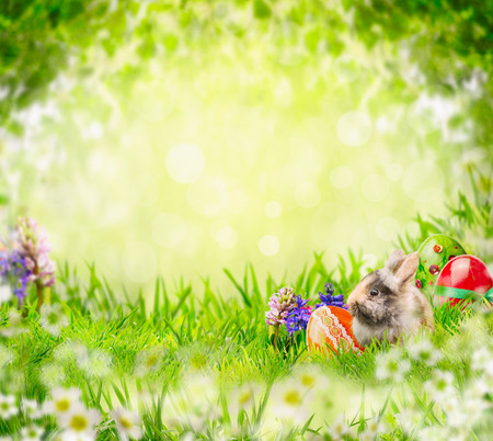 Easter bunny with eggs and flowers in grass over green garden tree leaves background