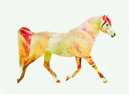 trot: Horse running trot, yellow red double exposure