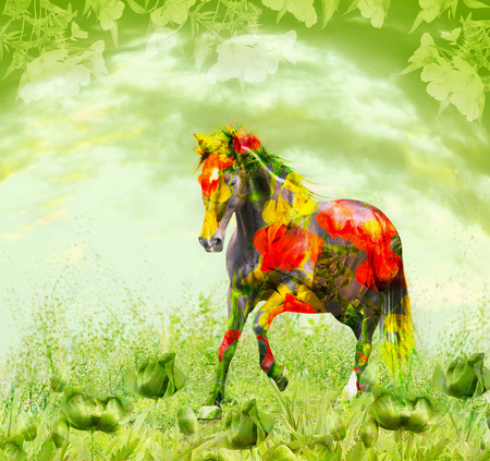 combining: Horse combining with red flowers running on green floral background, double exposure