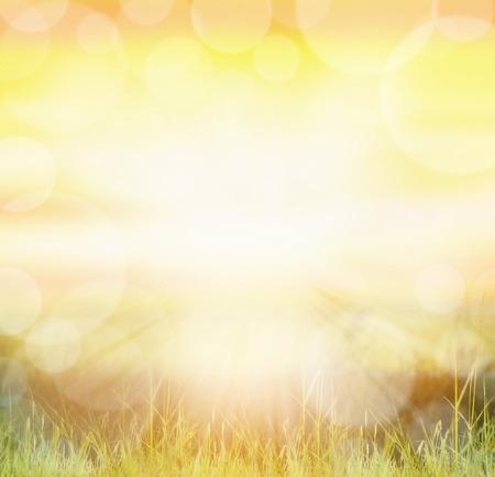 Natuur zonnige achtergrond met bokeh en zonnestralen op gras Stockfoto - 36990248