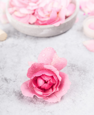 healthcare and beauty: pink rose with water drops on a gray marble table, spa background