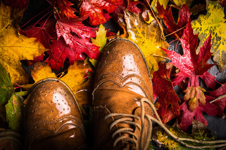 old shoes: old shoes and wet autumn leaves in  rain