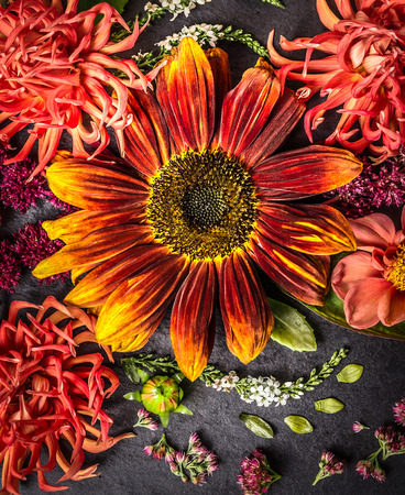 sunflower and  dahlias flowers on black slate tray, floral background photo
