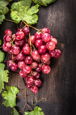 autumn motif: Bunch of pink juicy grapes from vine and leaves on dark wooden table, fruit background Stock Photo