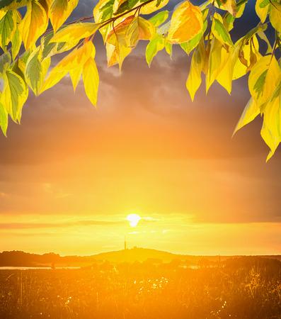 over the hill: Puesta de sol sobre las colinas y hojas de oto�o, fondo de naturaleza Foto de archivo