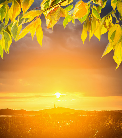 over hill: Sunset over  hill  and autumn leaves, nature background