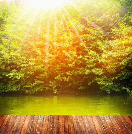 Nature background with wooden  terrace over lake and  bushes in sunlight photo