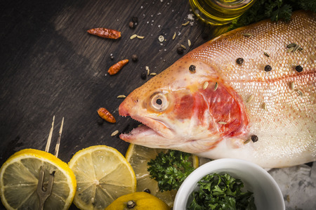 rearing of fish: raw rainbow trout fish preparation Stock Photo