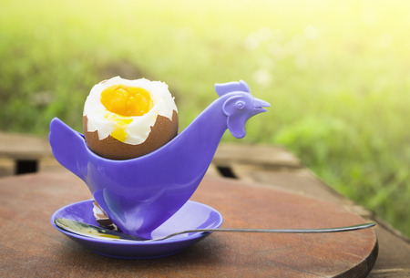 soft boiled egg in eggcup in the form of chicken on wooden board on background of grass photo
