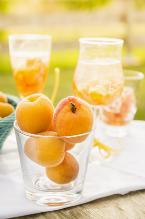 Ripe apricots in glass against background of drinks and sunny garden photo