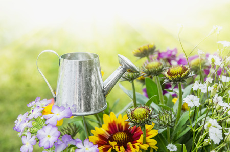 watering can in flowerbed in home garden