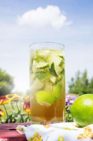ice tea in garden on sky background Stock Photo - 37518756