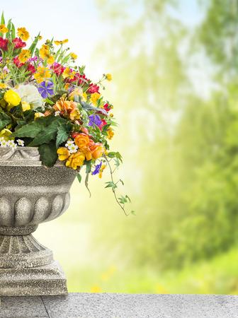 antique vase: Antique vase with flowers in garden