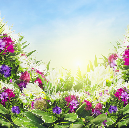 close p: Colorful flowers on sky background, floral border Stock Photo