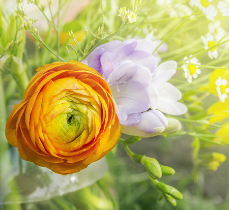 buttercup: orange buttercup in bouquet, floral background Stock Photo