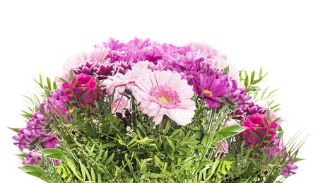 flower bunch: Pink flower bunch, isolated