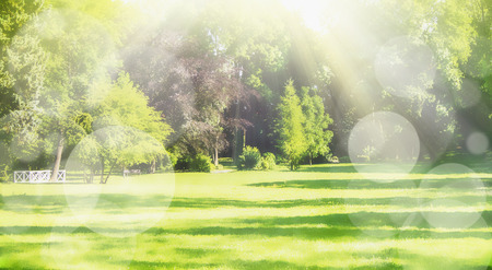 Summer blurred nature park background with sun rays, lawn and bokeh