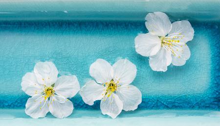 Witte bloemen in blauwe kom met water, spa, banner