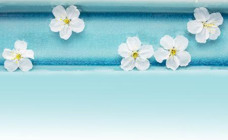 Flores de cerezo silvestre en el cuenco azul con agua, fondo spa