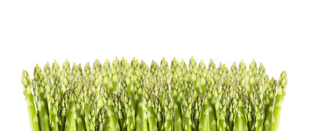 asparagus bed: green asparagus bed, isolated, border Stock Photo