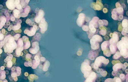 nature pattern: Aqua pink blurred floral background, frame
