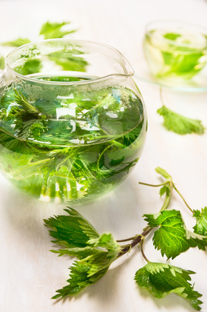stinging nettle: Nettle tea with glass pot and cup on white wooden background, top view