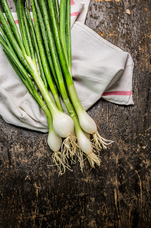 spring onions: Green onions bunch on dark rustic wooden background close up Stock Photo