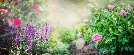 정원 세이와 빨간 모란 부시는 웹 사이트에 대한 화창한 공원 배경 배너에 장미 꽃
