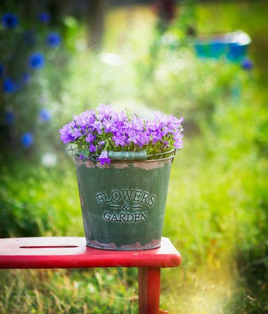 little bell: Old green bucket with garden bell flowers on red little stool over summer nature background Stock Photo