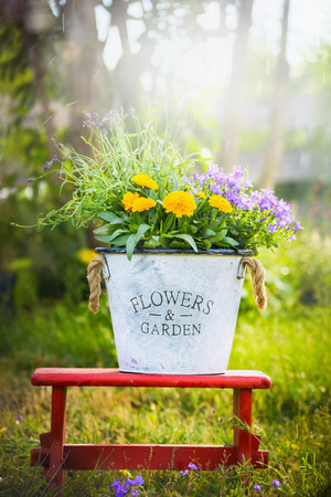 garden design: White bucket with garden flowers on red little stool over summer nature background