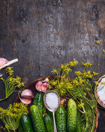 fresh garlic: Fresh garden cucumber with ingredients for preserving: spoon of salt, dill and garlic on rustic wooden background, top view, place for text
