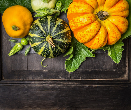 colorful pumpkin with stem and leaves on dark wooden background, top view