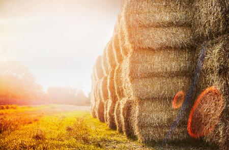일몰 자연 배경에 짚의 수확 bales 스톡 콘텐츠