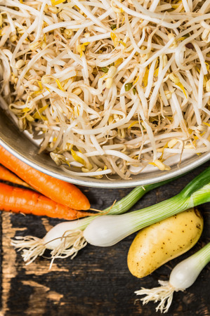 bean sprouts: Bowl with bean sprouts and soybean sprouts with fresh organic vegetables on rustic wooden background, top view, close up. Stock Photo