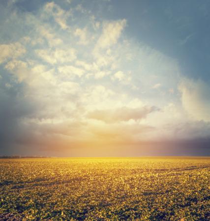 景觀: 秋季或夏季領域的風景以驚人的天空,模糊的自然背景 版權商用圖片