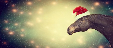 light brown horse: Ghristmas background with black horse and Santa hat, banner,  toned Stock Photo