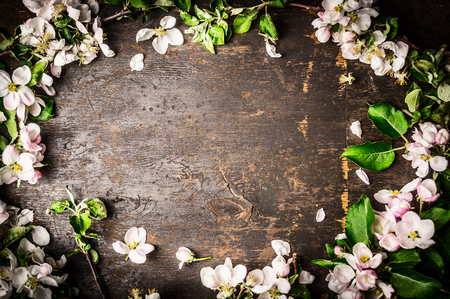 surface view: Frame of fruit trees flowers on rustic background, top view Stock Photo