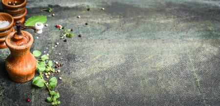 Sfondo rustico con il pasto pepe mulino e condimento, vista dall'alto, banner