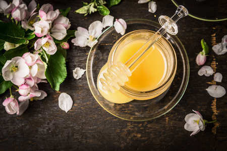 blossom honey: Fresh honey in jar with spring blossom of fruit trees on dark wooden background, top view Stock Photo